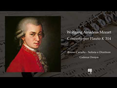 W.A. Mozart - Flute Concerto in D major, K.314 - Cadenze Donjon. Flauto: Bruno Cavallo