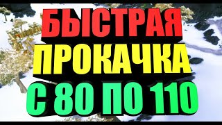 бЫСТРАЯ ПРОКАЧКА ПЕРСОНАЖА 80-110, ПОЛЕЗНЫЕ СОВЕТЫ В БФА