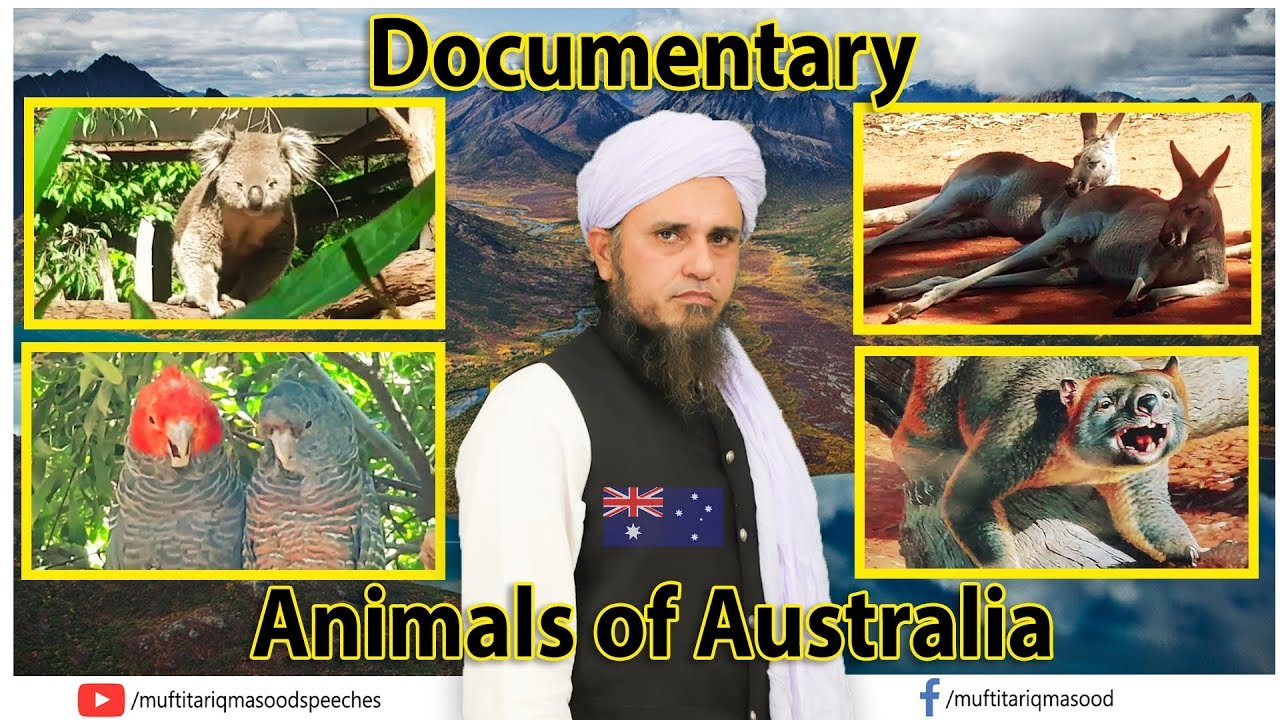 Animals of Australia Melbourne | Documentary |  Mufti Tariq Masood Speeches ?