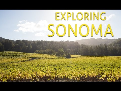 Exploring Sonoma: Where to Eat, Drink, Hike and Relax