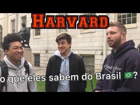 O que Os Gringos sabem sobre Brasil na Melhor Universidade dos EUA Harvard