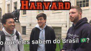 Baixar O que Os Gringos sabem sobre Brasil na Melhor Universidade dos EUA (Harvard)