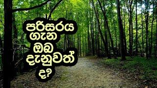Piyum Vila | පරිසරය ගැන ඔබ දැනුවත් ද?| 07- 03 - 2019 | Siyatha TV Thumbnail