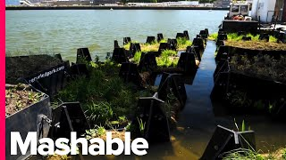 In This European City, Plastic Waste Collected From The Rivers Is Used To Create Floating Parks