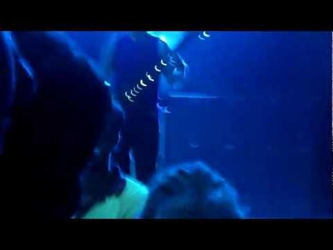 311 - No Control - Live HD 2010 Unity Tour - The Riverbend Cincinnati, OH