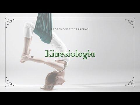 ¿qué-es-la-kinesiología?