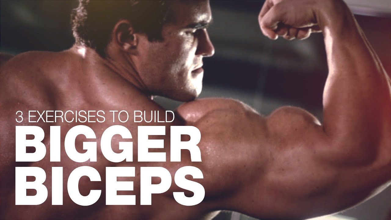 The best 3 exercises for a bigger chest and shoulders images