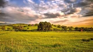 видео Как найти участок по кадастровому номеру земельного участка