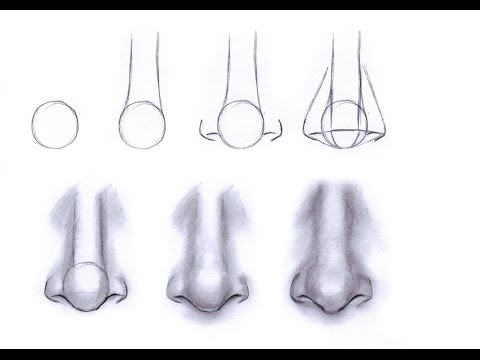Gallery For gt How To Draw A Nose Step By Kids