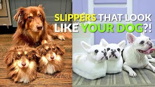Slippers Made To Look Like Your Dog!