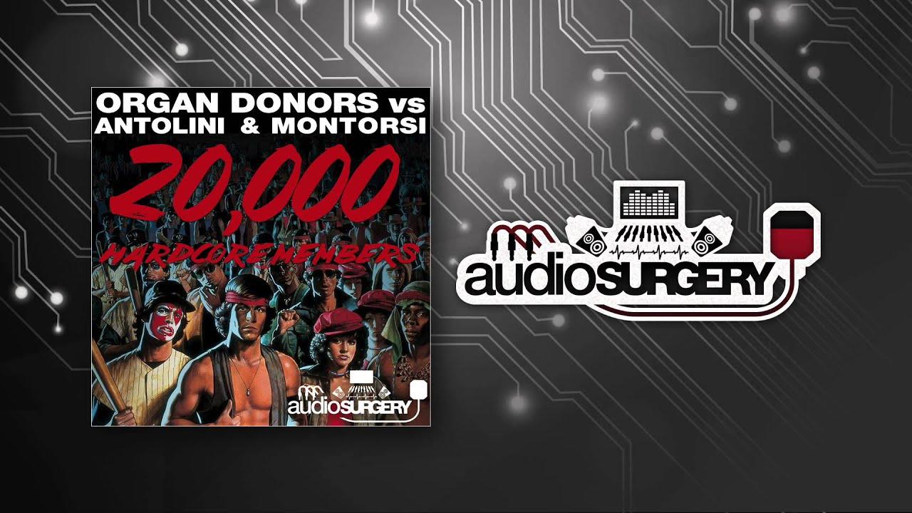 Organ Donors vs. Antolini & Montorsi - 20,000 Hardcore ...