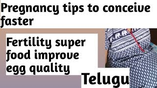 Telugu Pregnancy tips to conceive faster with fertility super food.
