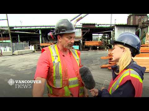 CBC Vancouver: Mill Workers And Forest Industry Staff Call On B.C. For Policy Change Amid Closures