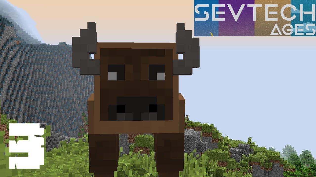 SevTech Ages I#3I Mandan Buffalo Dance - Perfect Pet Trainning