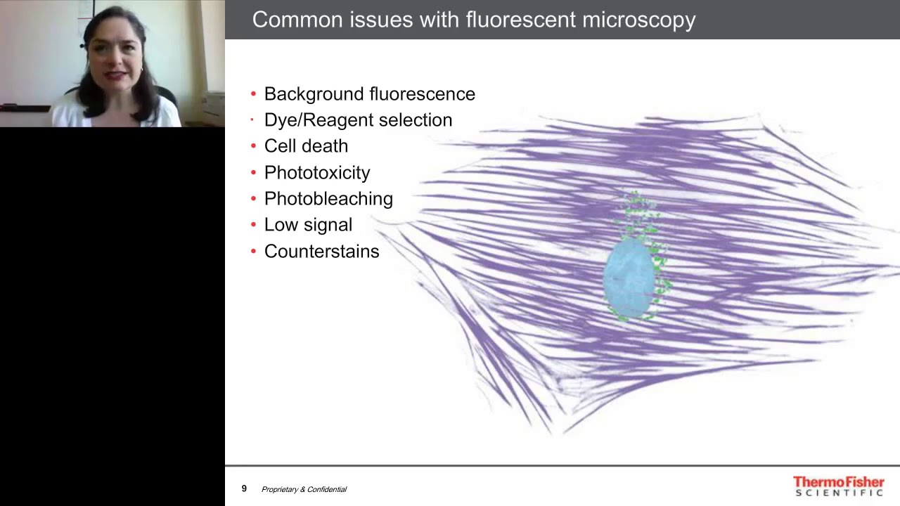 Download Practical considerations for fluorescence microscopy