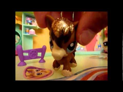 Mes nouveaux petshop cheval et p lican youtube - Cheval petshop ...