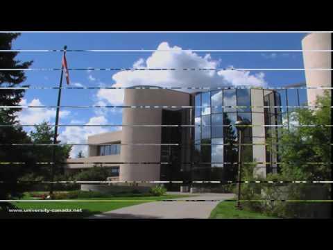 University of Calgary,Canada