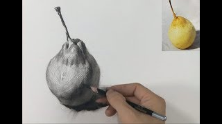 Draw a pear - demonstration