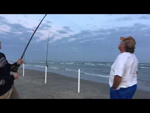 Galveston Texas Surf Fishing Shark