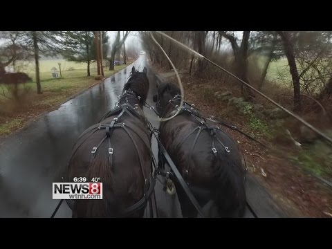 Cruisin' Connecticut – Hollywood Horse-Drawn Carriages at Allegra Farm in East Haddam