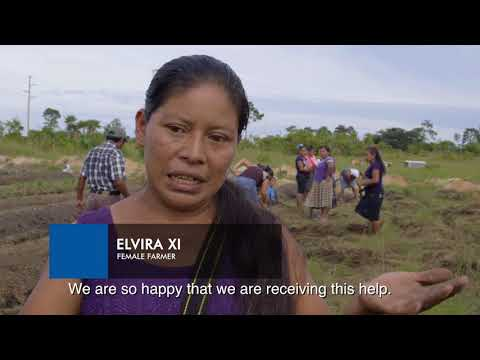 Building climate resilience in Toledo District, Belize