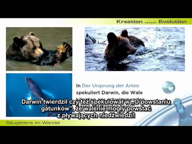 Walter Veith - Dewolucja i kreacjonizm cz.4