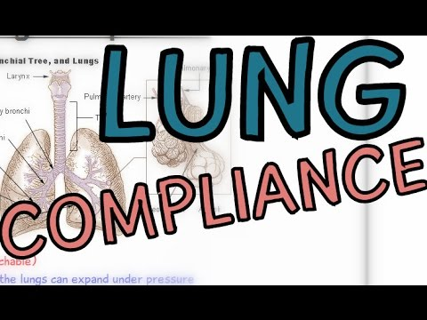 The Respiratory System: Lung Compliance - Transpulmonary Pressure - Explained in 2 Minutes!