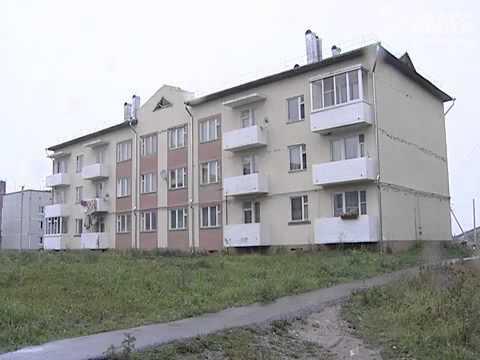 Тело подростка нашли на дереве в Грязовецком районе Вологодской области