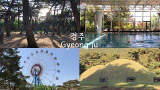 경주 1박2일 여행코스 추천 2탄 (경주월드, 삼릉숲,…