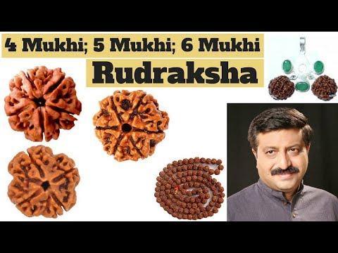 the amazing power of rudraksha