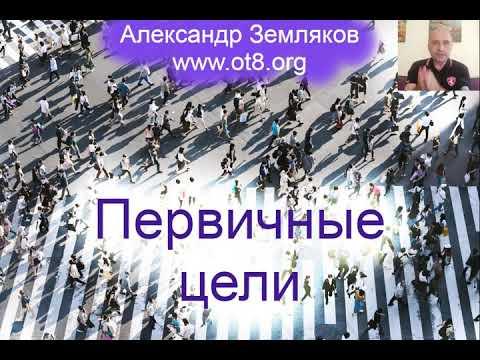 343-Первичные цели и предназначение - Александр Земляков