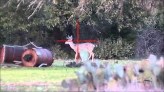 Extended deer season 2015 2016 GTHTV At Bob