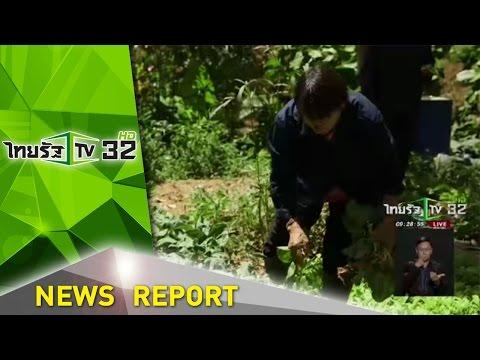 โครงการฟาร์มตัวอย่าง บ.ถ้ำทะลุ จ.ยะลา   08-10-59   ชัดทันข่าว   ThairathTV