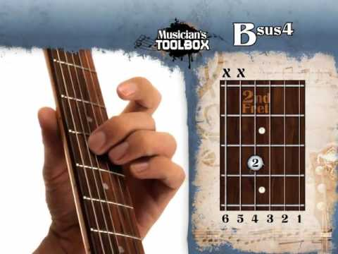 How To Play The B Sus 4 Chord On Guitar Bsus4 Youtube