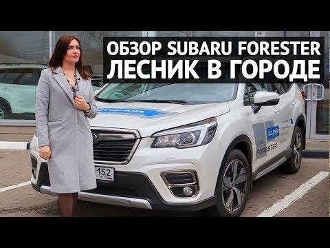 """Обзор Subaru Forester 2019 - """"Лесник"""" в городе"""
