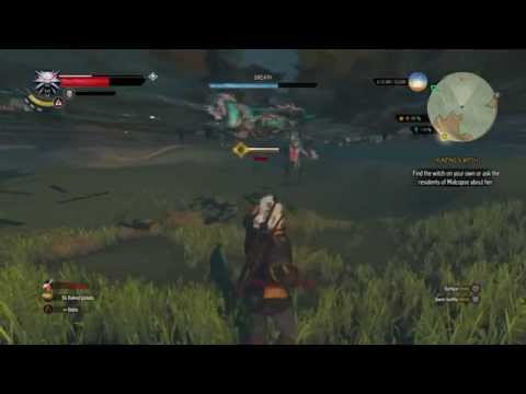Witcher 3: Easy Early Fast Leveling Velen - YT