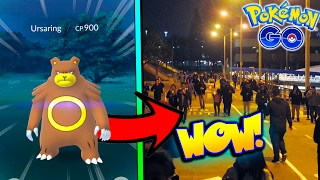 WILD URSARING CAUSES HUGE STAMPEDE! RARE GENERATION 2 WILD CATCHES IN POKEMON GO!
