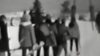 видео Российский исследователь разгадал тайну перевала Дятлова