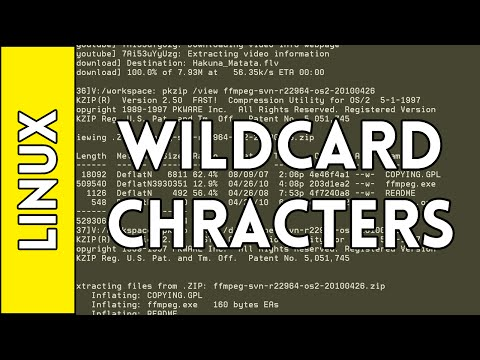 Wildcard Characters - Introduction to Linux for Absolute Beginners (2016)