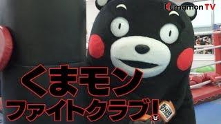 くまモンTV #39「ついにくまモンファイトクラブ始動!?」( Kumamon TV #39)