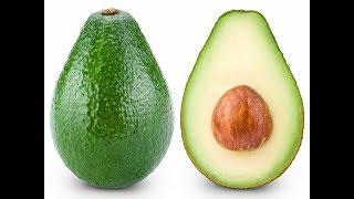 Плод АВОКАДО - 9 месяцев для созревания! Величайший ДАР ПРИРОДЫ!