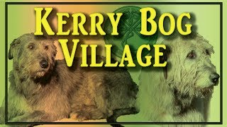 The Kerry Bog Village And Their Irish Wolfhounds