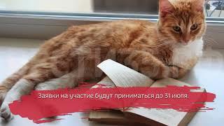видео Областной конкурс «Вологда читающая»