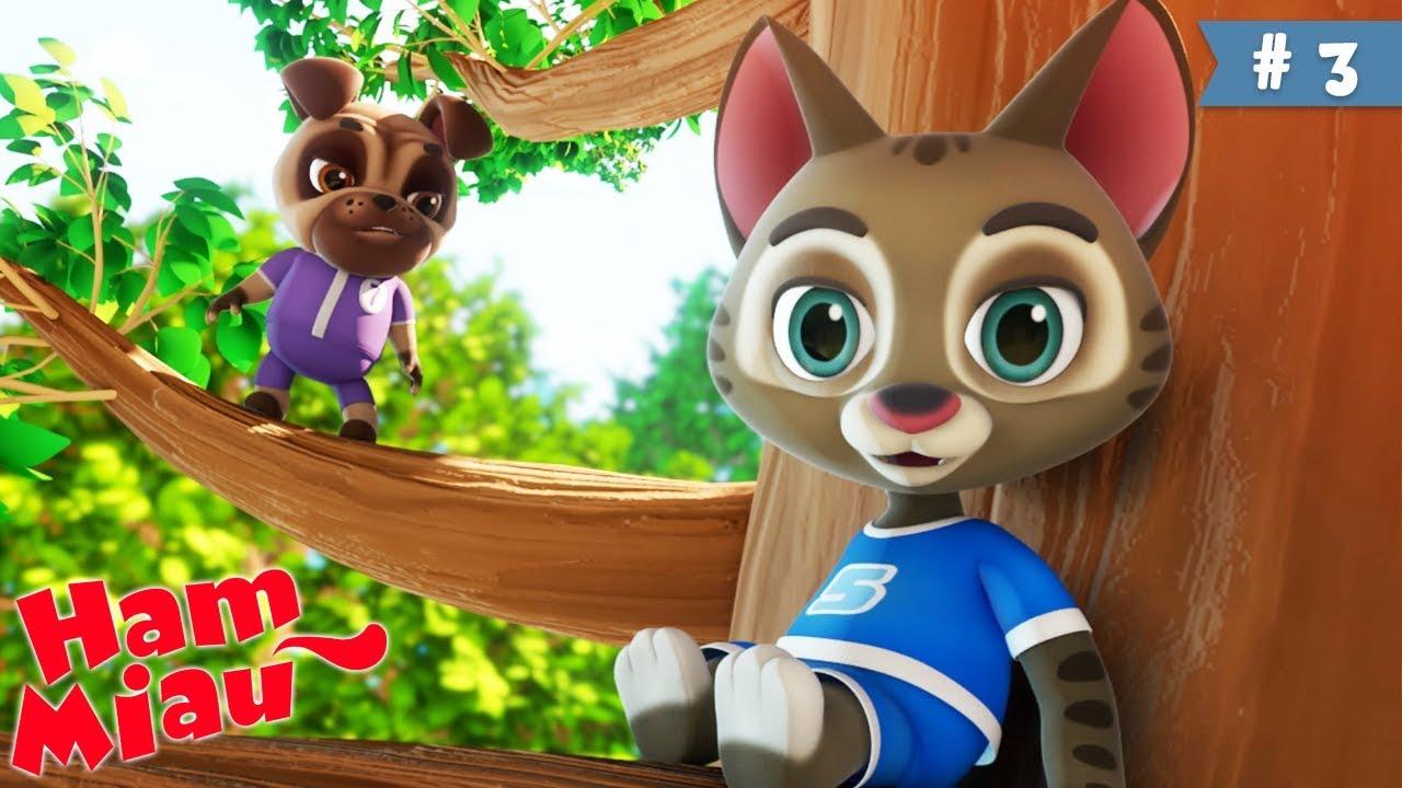 Ham Miau ? Sus si jos ? Desene animate pentru copii | HeyKids