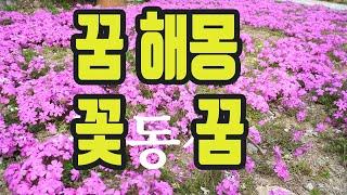꽃꿈ㆍ꿈해몽풀이 (금전운 사업운 궁합운 결혼운 애인운 직장운 취업운 건강운)