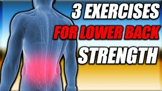 3 Exercises To Strengthen Your Lower Back