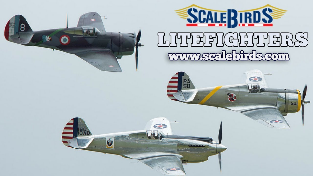 ScaleBirds, LiteFighter Replica Aircraft, Verner Radial Aircraft Engines.