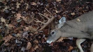 Deer Hunting 2017 (BIGGEST BUCK OF MY LIFE)