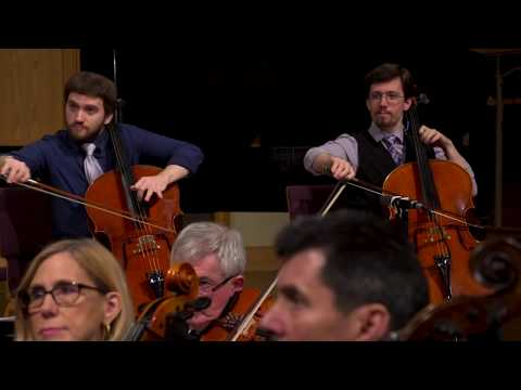 Mozart Sinfonia Concertante - I. Allegro maestoso -  Transcribed Two Cellos - The Rice Brothers