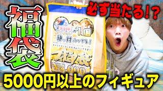 【福袋】高額のフィギュアが欲しいから福袋開封するぞ!!!